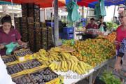 Markt in Pineda de Mar