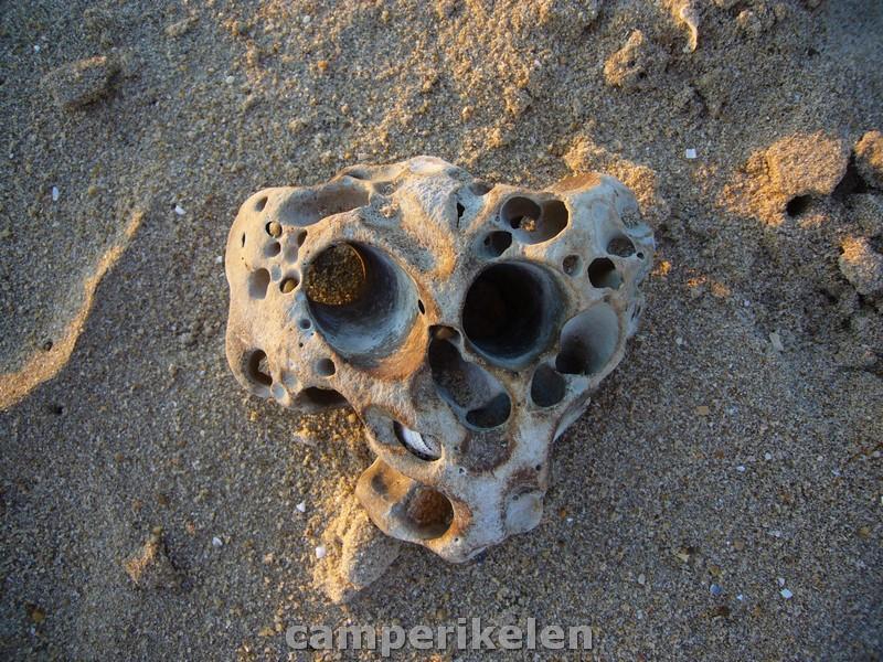 Vreemd gevormde stenen op het strand