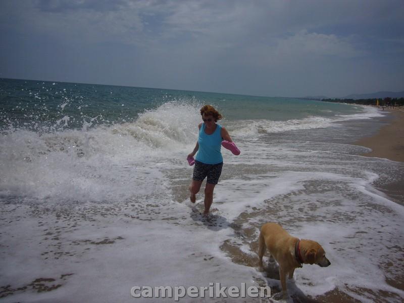 Hoge golven aan het strand