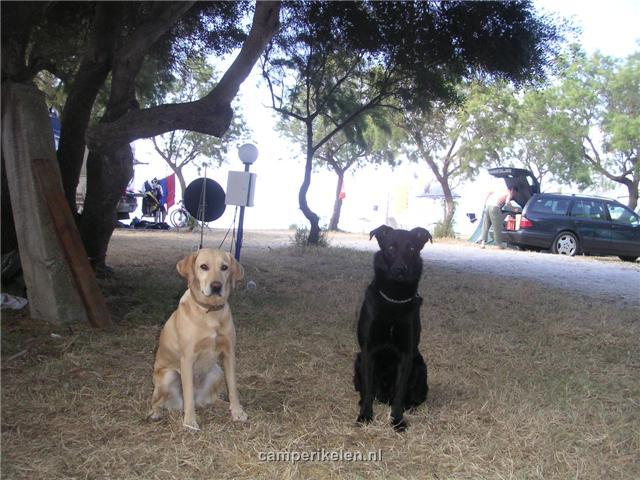 Trisha en Balou