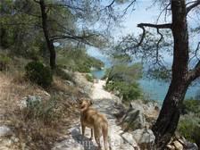 Wandelen langs de baai