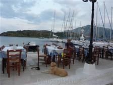 Eten aan de haven van Palea Epidavros