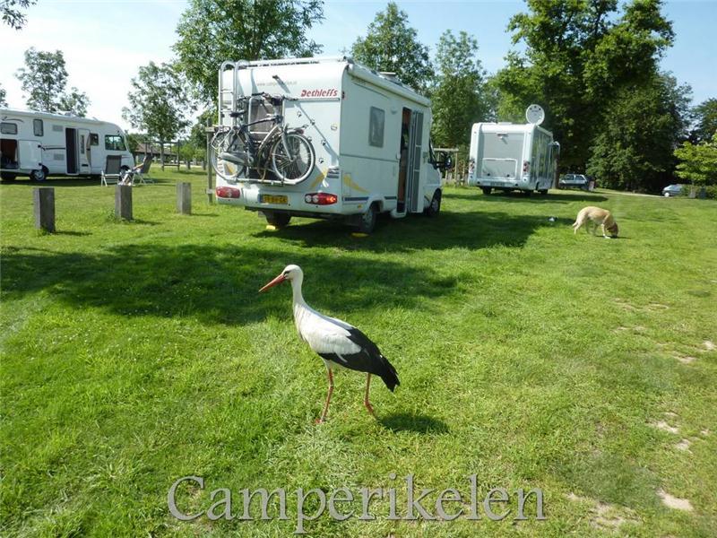 Camperplaats Villars les Dombes