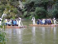 Vlotvaren op de rivier