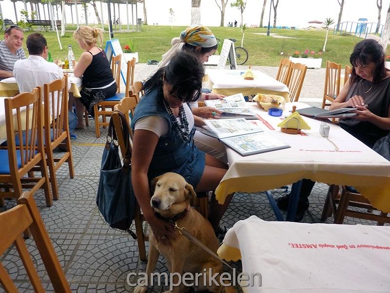 Andere gasten (Serviërs) vinden Trisha erg lief