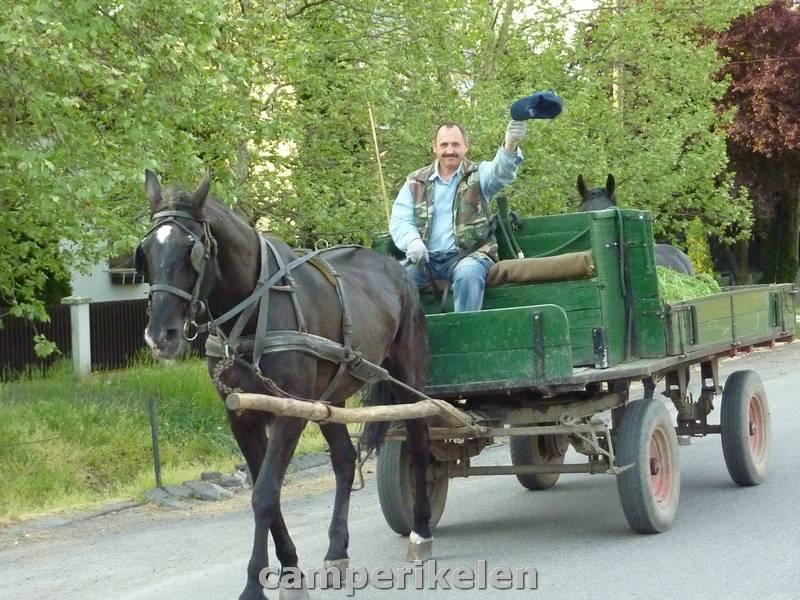 Zwaaiende boer in Slowakije