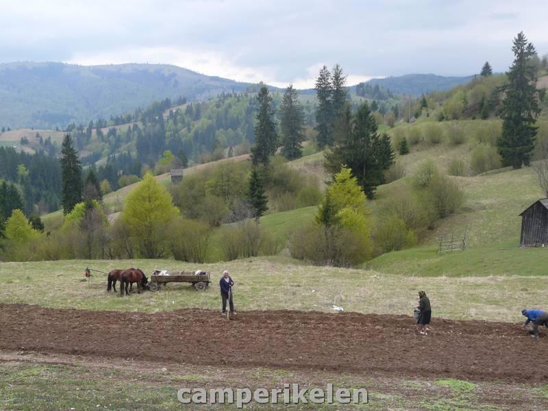 Boeren aan het werk op het land