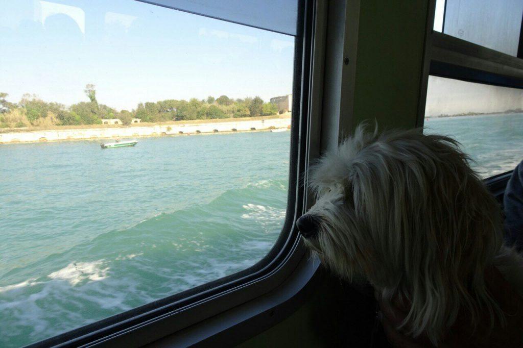 Met de boot naar Venetië